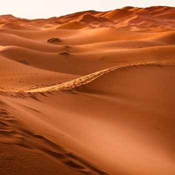 Atumnal warmth of a desert - colour analysis lets you choose the right palette also at 50+